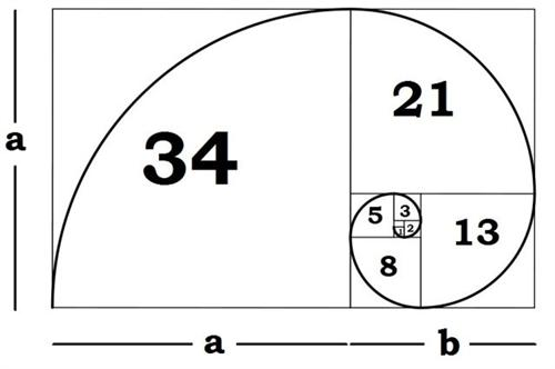 Fibonacci Squares and the Golden Spiral