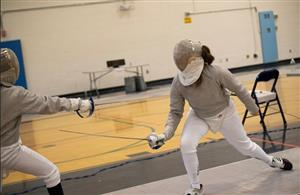 Paone fencing
